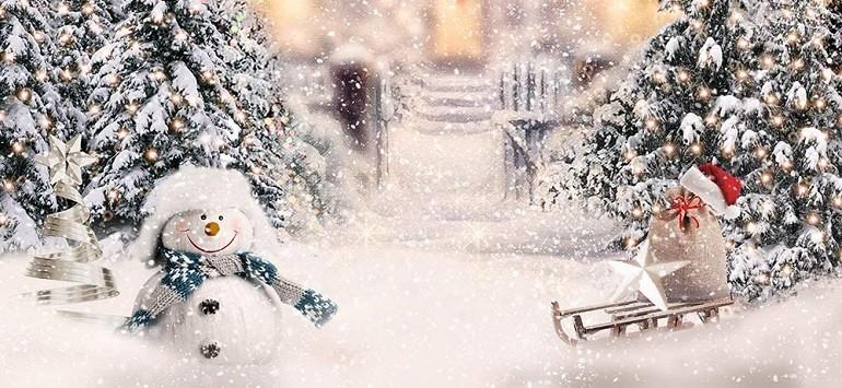 Sretne nadolazeće blagdane i Novu godinu želi vam Savez distrofičara FBiH!